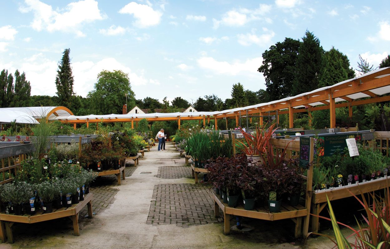 Ashtead Garden Centre Fordingbridge