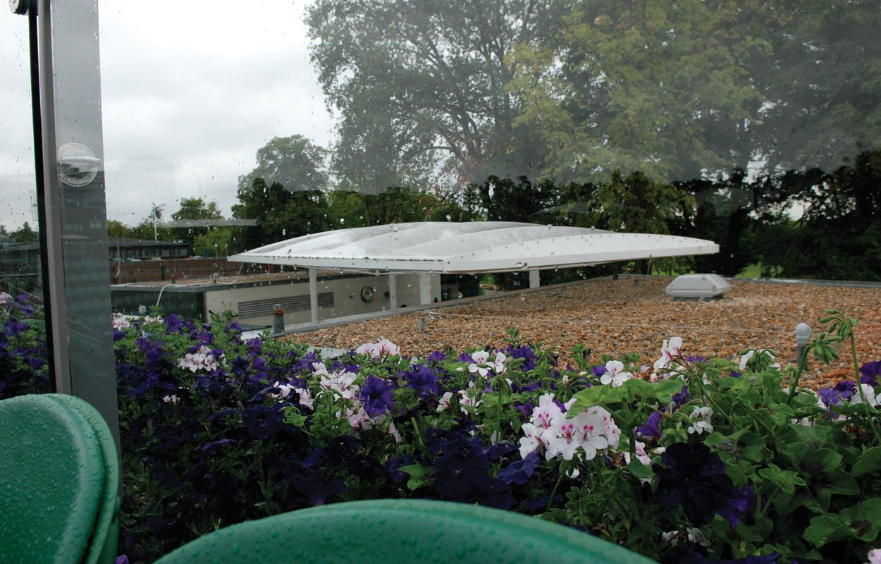 Wimbledon Lawn Tennis Club Fordingbridge