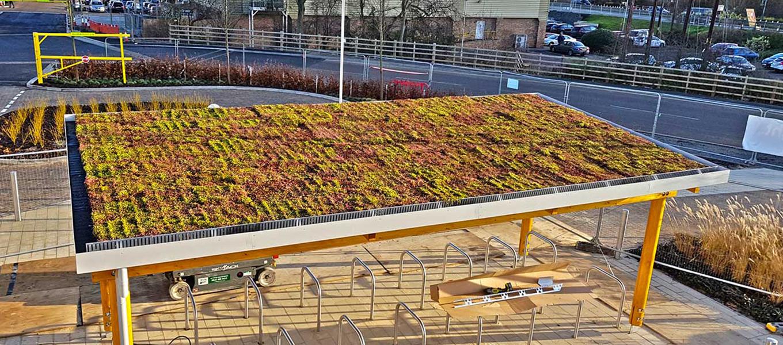 Elliots Field Retail Park Fordingbridge Sedum cycle shelter