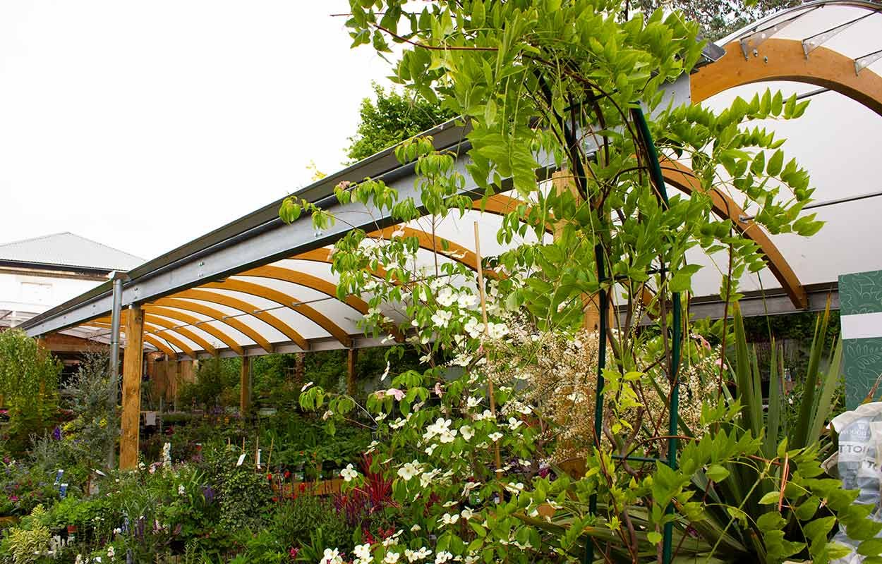 camden-garden-centre-timber-canopy-london-by-fordingbridge2