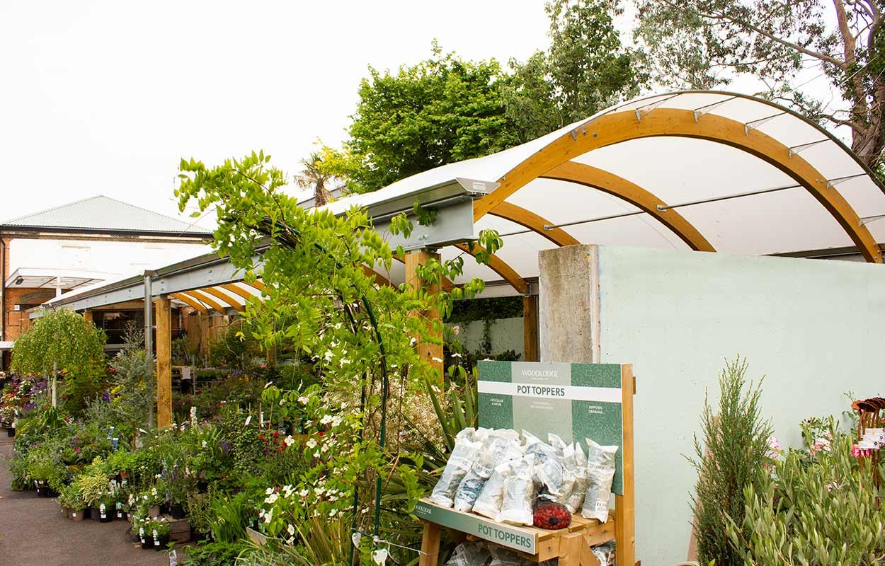camden-garden-centre-timber-canopy-london-by-fordingbridge7