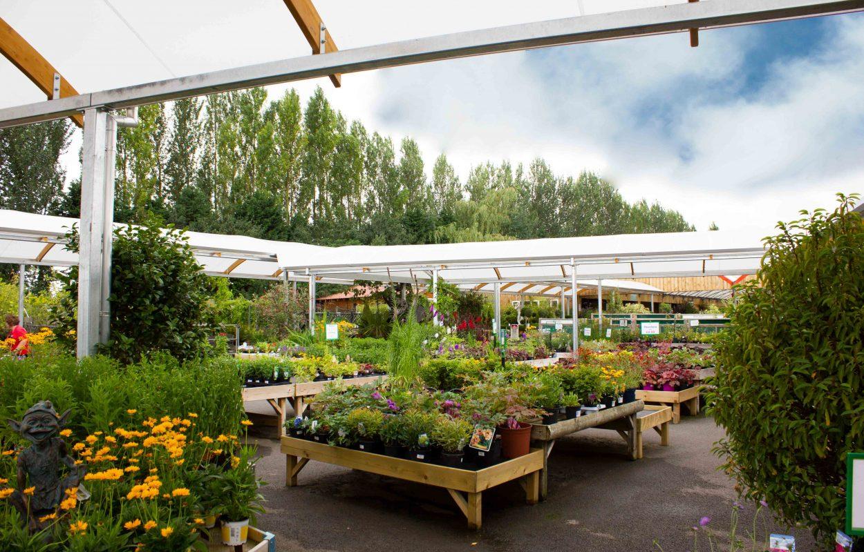 Brigg-Garden-Centre-Hybrid-Canopy-Walkway-by-Fordingbridge-5