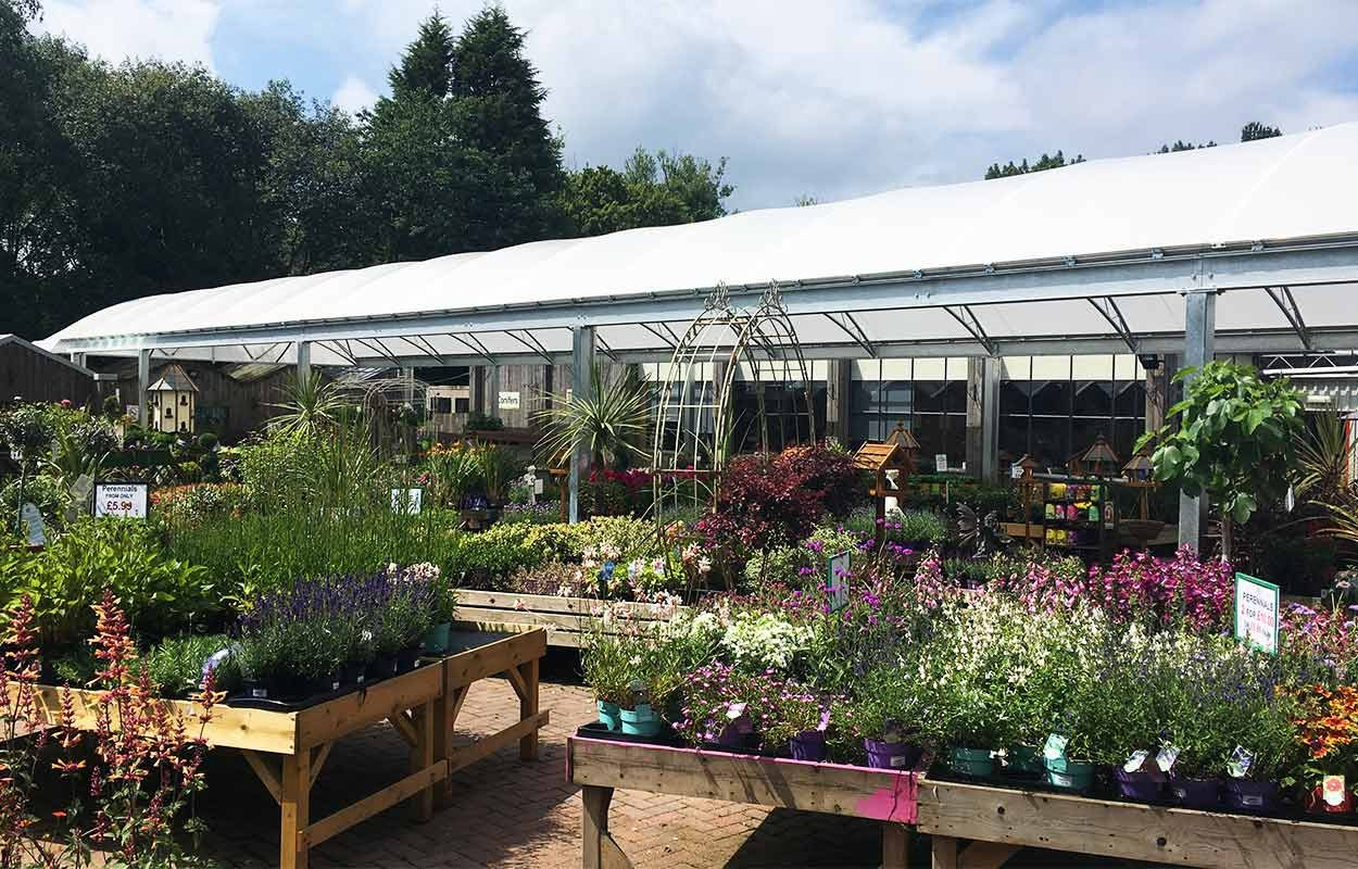 Towneley-Garden-Centre-canopy-by-Fordingbridge