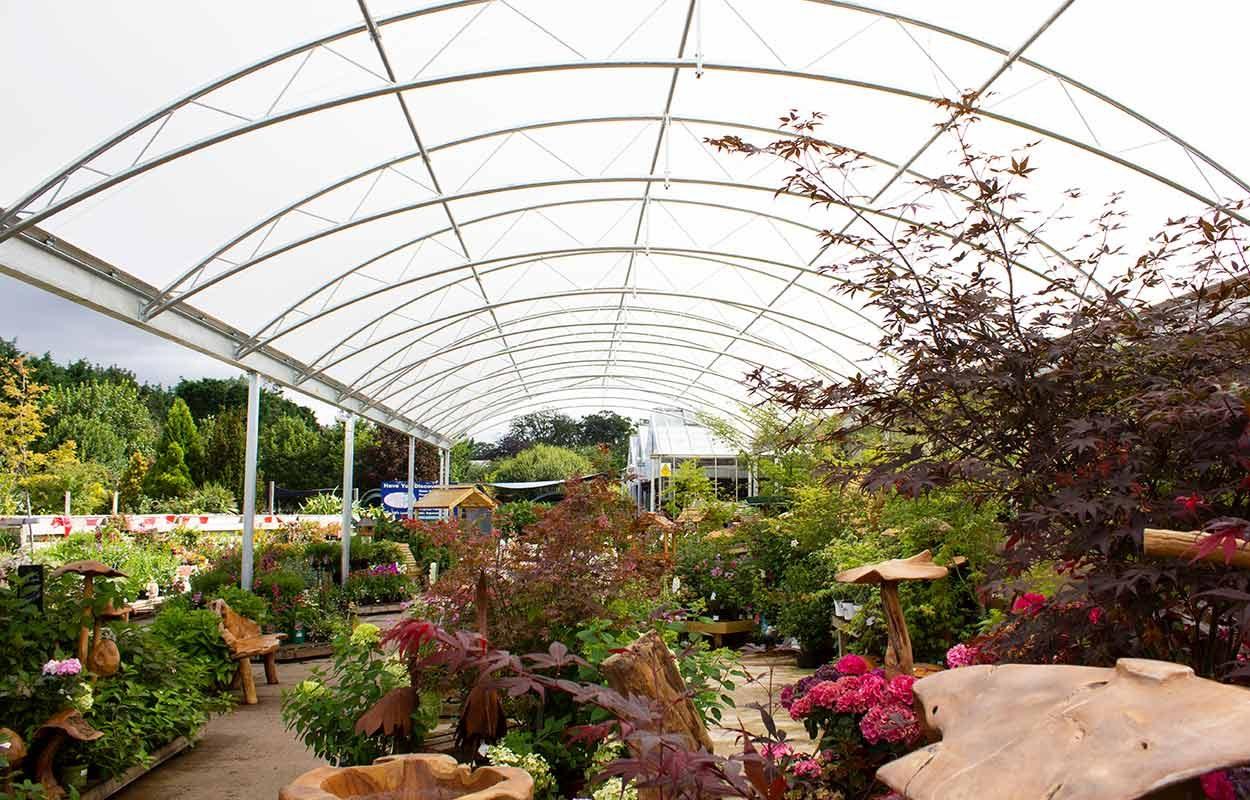 Timmermans-Garden-Centre-Steel-Canopy-5